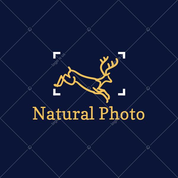 Natural Photo Logo